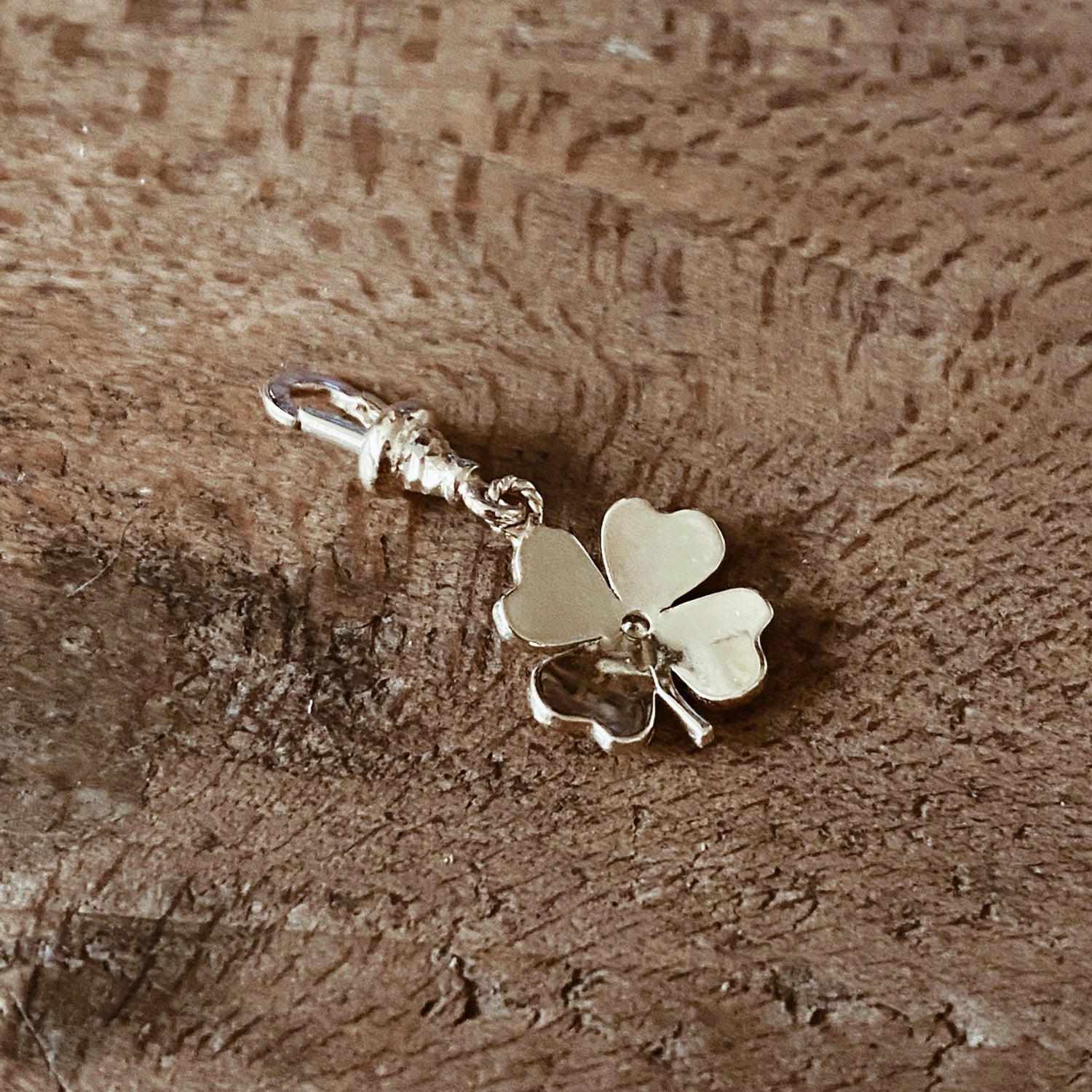 Image of CLOVER CHARM.