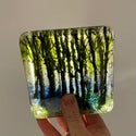 Forest Coasters