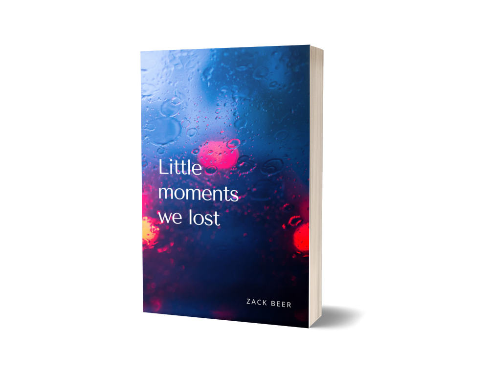 Little Moments We Lost