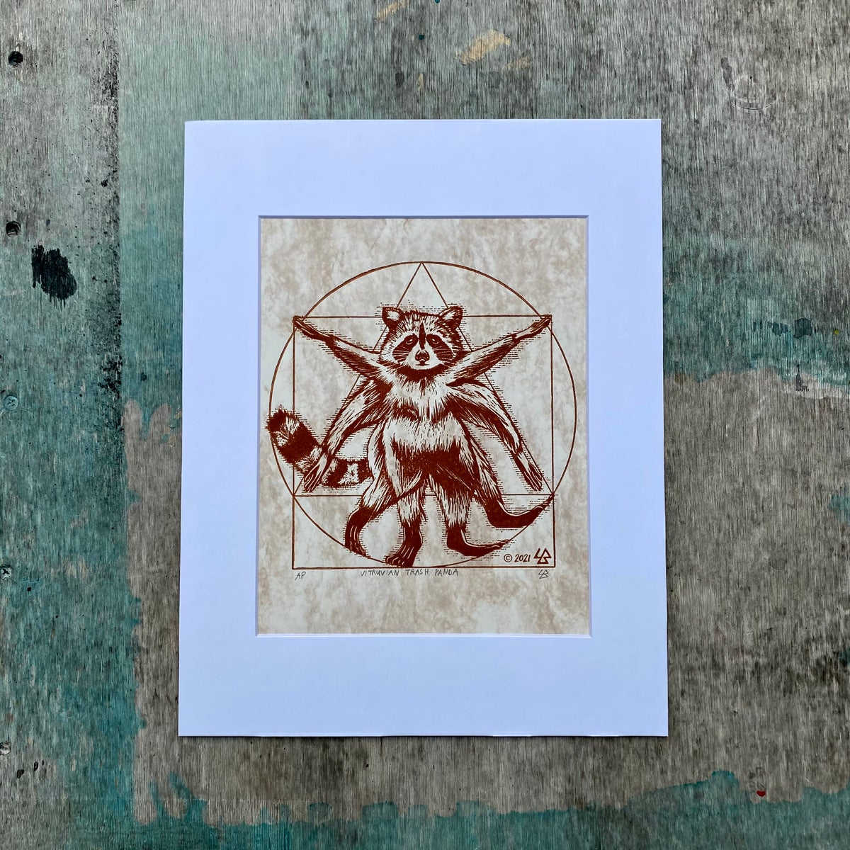 Image of Vitruvian Trash Panda