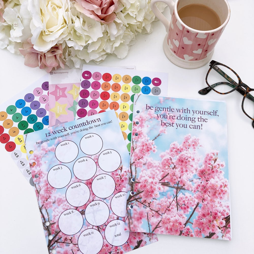 Image of 12 WEEK ORGANISER REFILL FOOD DIARY BUNDLE -BE GENTLE WITH YOURSELF