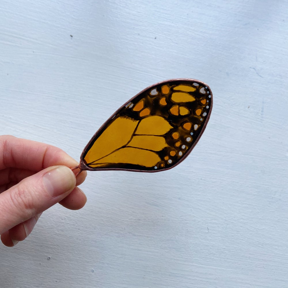 Image of Monarch Butterfly Wing no.2