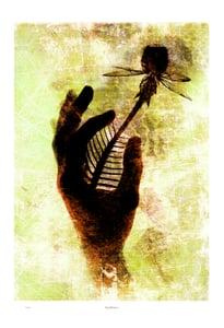 Image of Print: Handflower 2