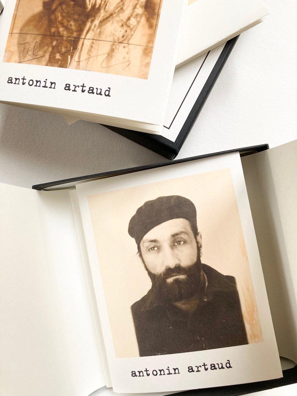 Image of ANTONIN
