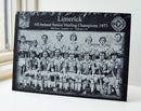 Image 1 of Limerick All Ireland Hurling Champions 1973