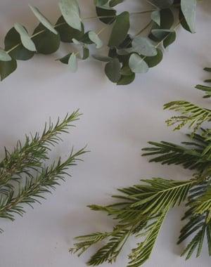 Image of Scandinavian Winter Wreath Making Workshop