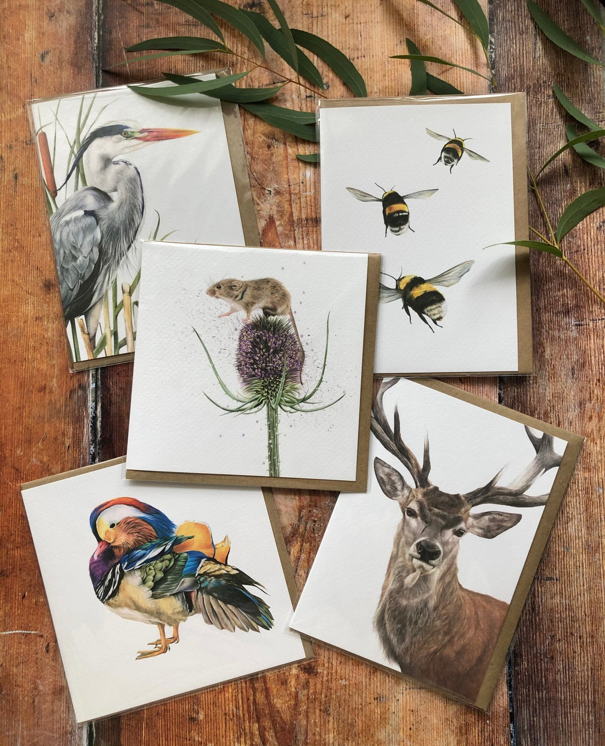 Image of Greeting Card Bundles - Random Selection 3, 5, 10, 15 or 20