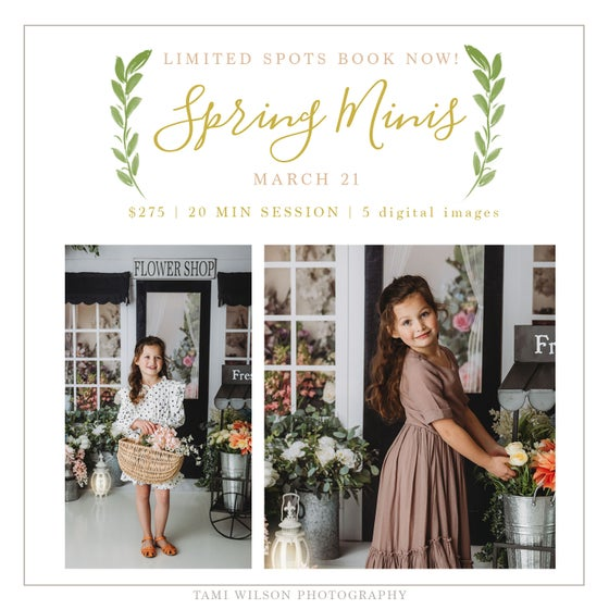 Image of Spring Mini Sessions - March 21