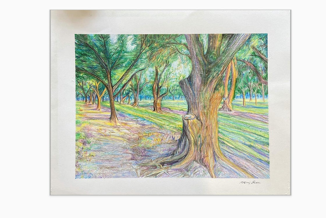 """Image of """"Orchard on Paper"""""""