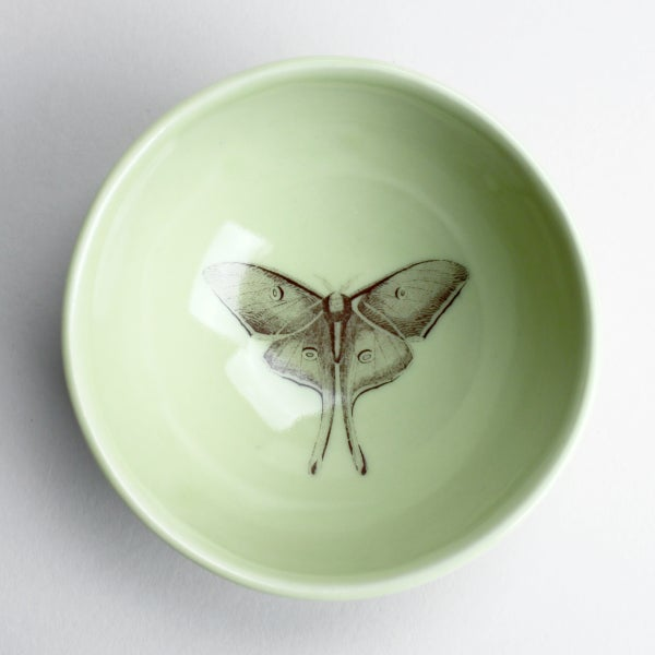 Image of roly poly bowl with luna moth, avocado