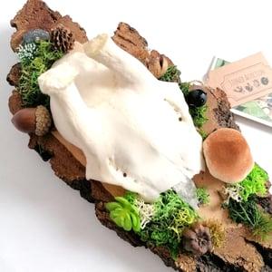 Image of Vintage Woodland Themed Roe Deer Skullcap I