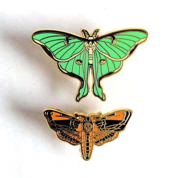 Image of Cute Moth Enamel Pin (assorted)