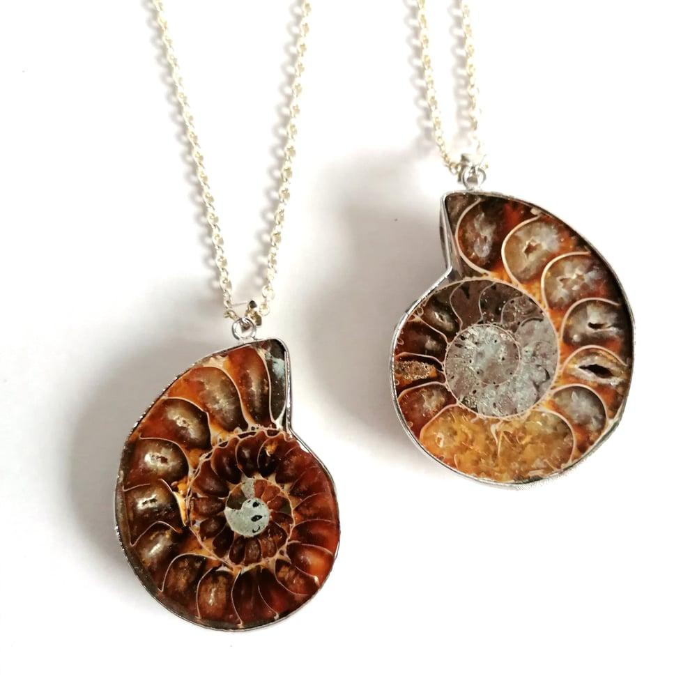 Image of Large Ammonite Cameo Pendant