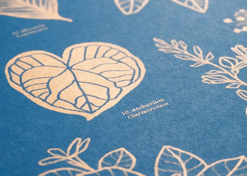 Image of Botanical Artprint