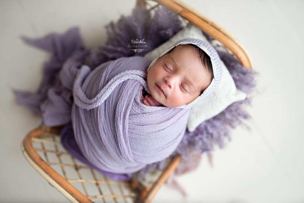 Image of Budget Swaddled Newborn Minis $350
