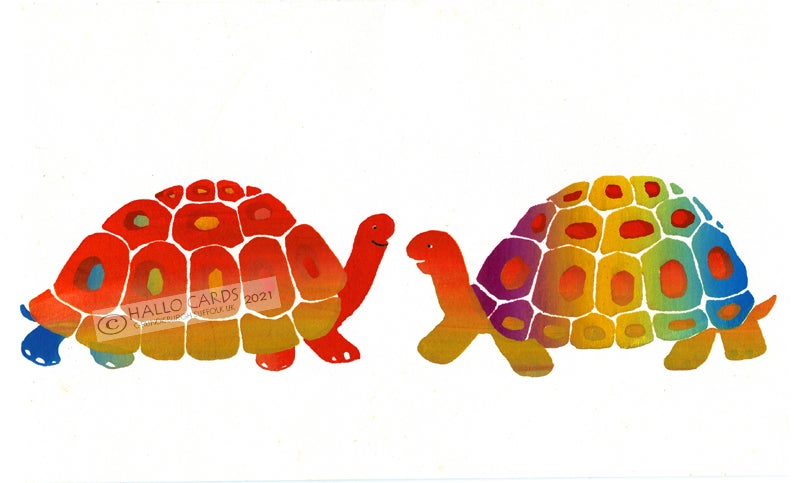 Image of Tortoises