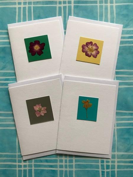 Image of Pressed Flowers