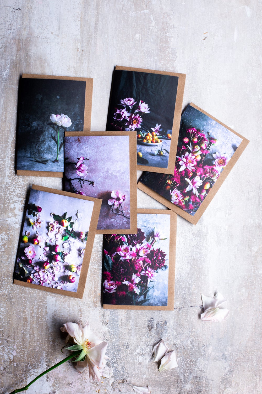 Image of Blossom & bloom — greeting card set (6)