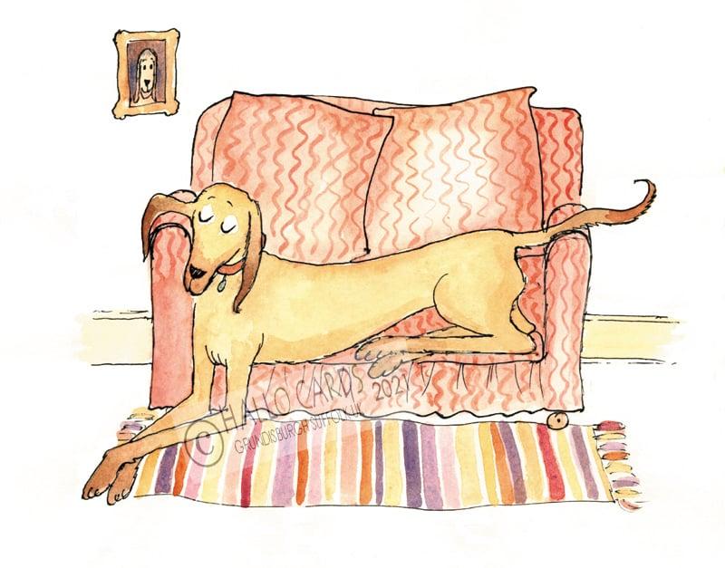 Image of Large Dog - Small Sofa