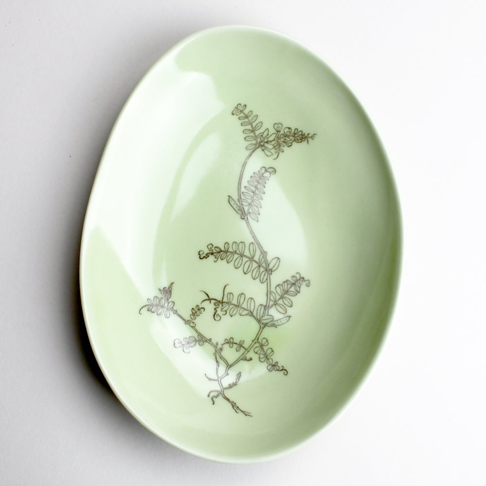 Image of shallow beachstone dish in avocado with sweet pea vine