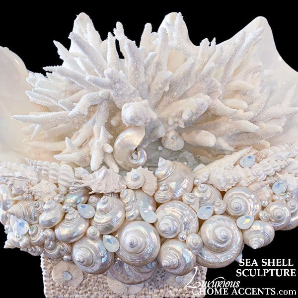 Image of Sea Shell Sculpture