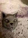Kitty Bath Bombs