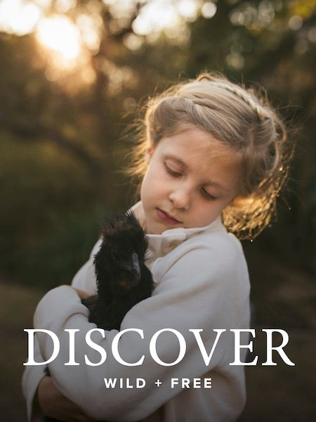 Image of DISCOVER Content Bundle