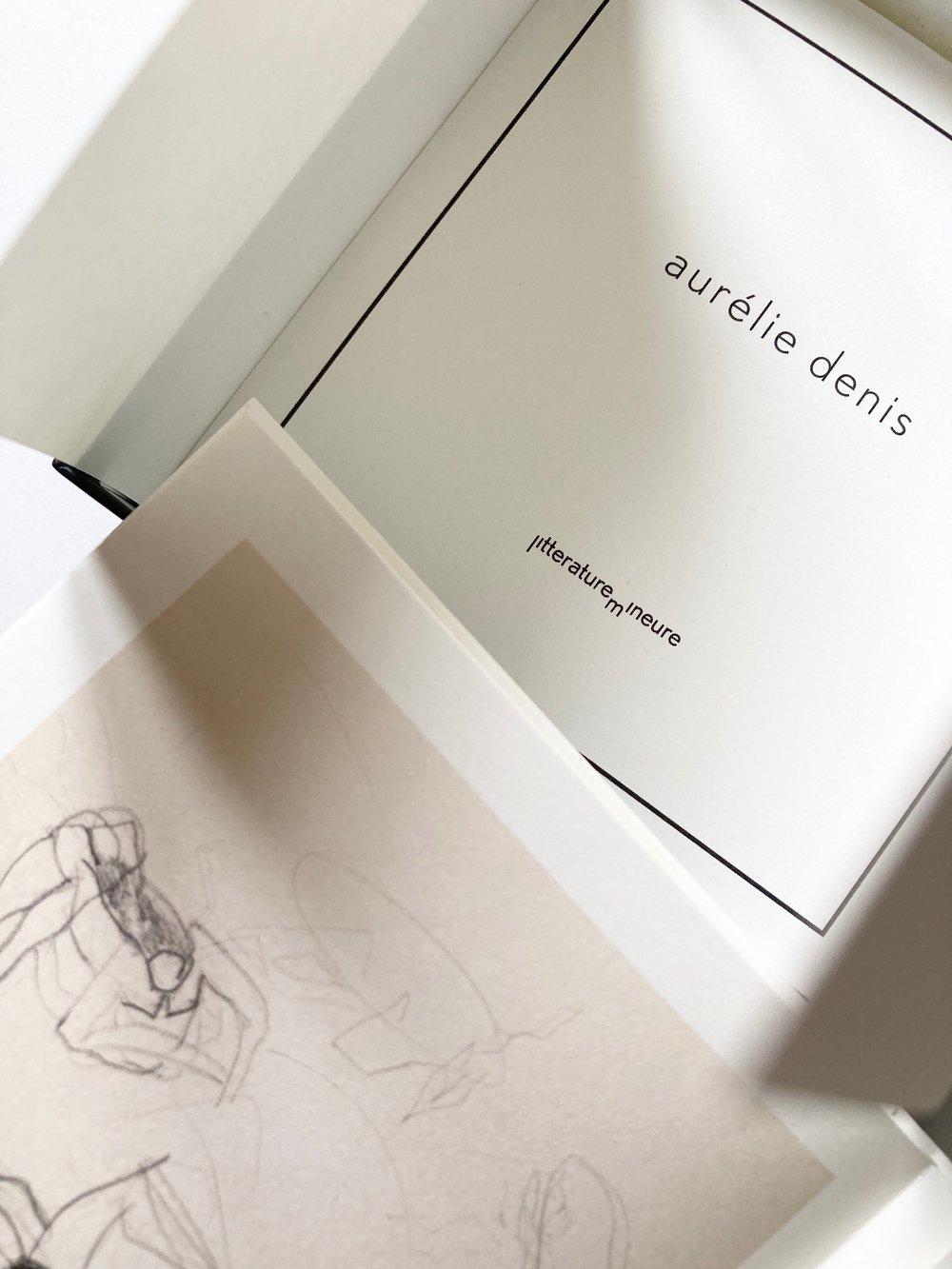 Image of DENIS