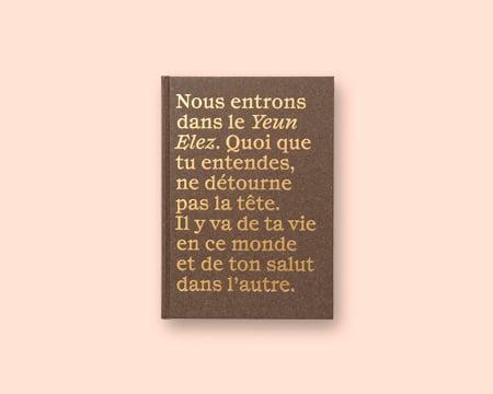 Image of STEPHANE LAVOUE Les Enchanteurs