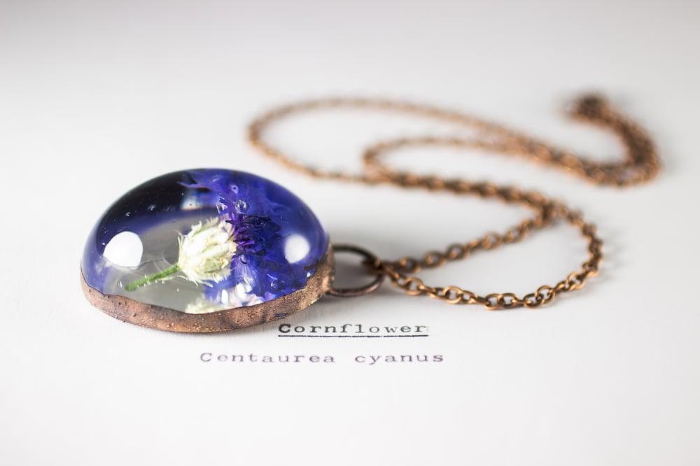 Image of Cornflower (Centaurea cyanus) - Copper Plated Necklace #1