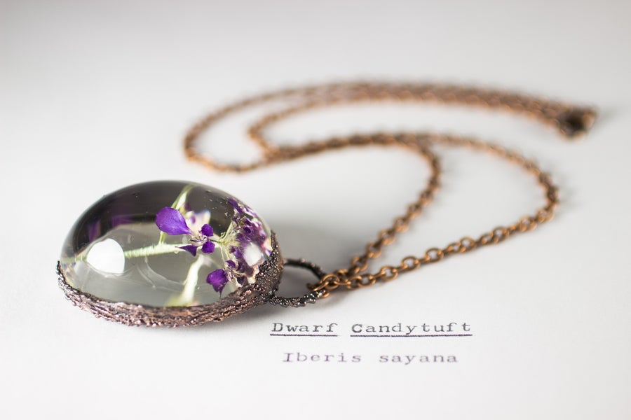 Image of Dwarf Candytuft (Iberis sayana) - Copper Plated Necklace #1
