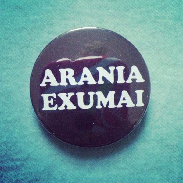 Image of badge harry potter - arania exumai