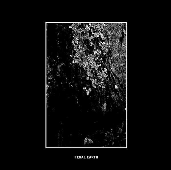 Image of Jaakko Vanhala – Feral Earth CD