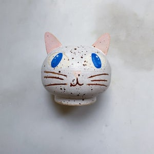 Image of White spotted cat #5