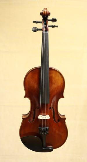 Image of 4/4 Geige2020