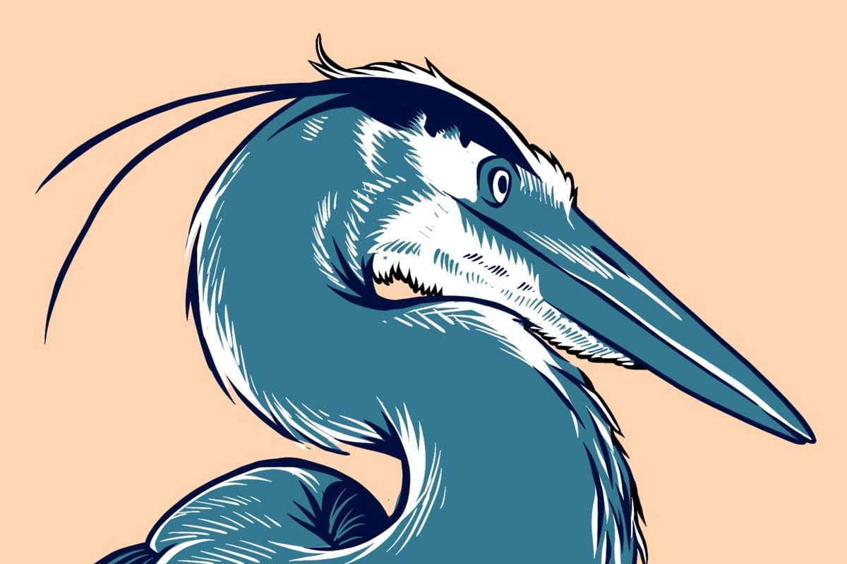 "Image of Great Blue Heron Linocut - 5 x 7"""
