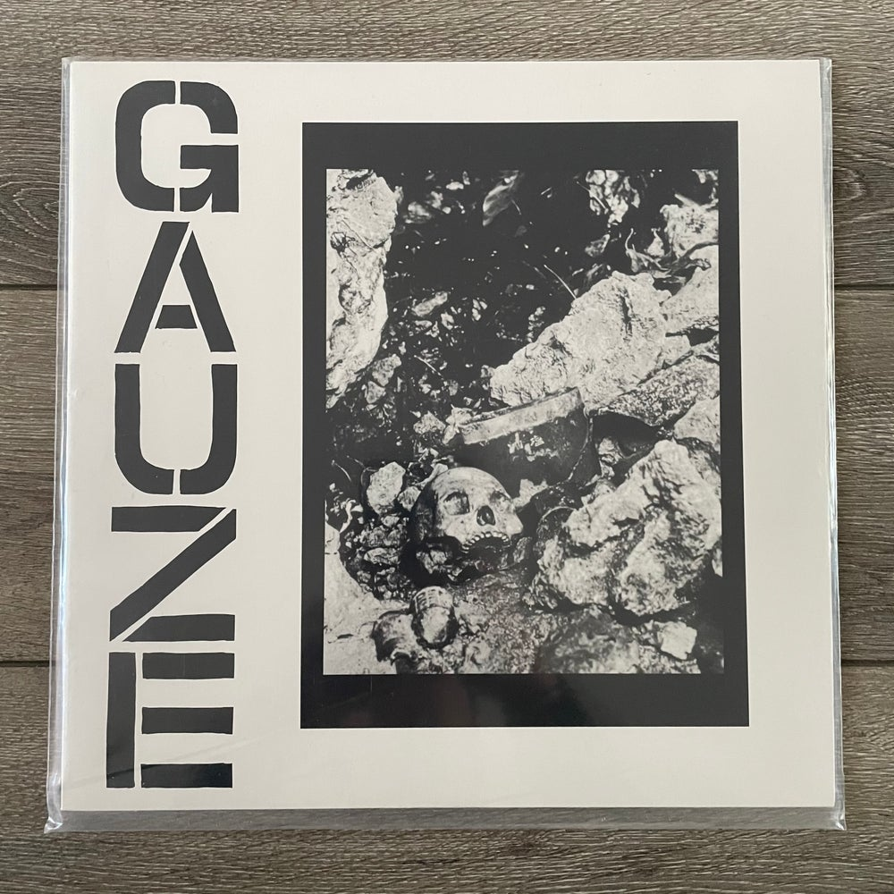 Image of Gauze - Equalizing Distort Vinyl LP