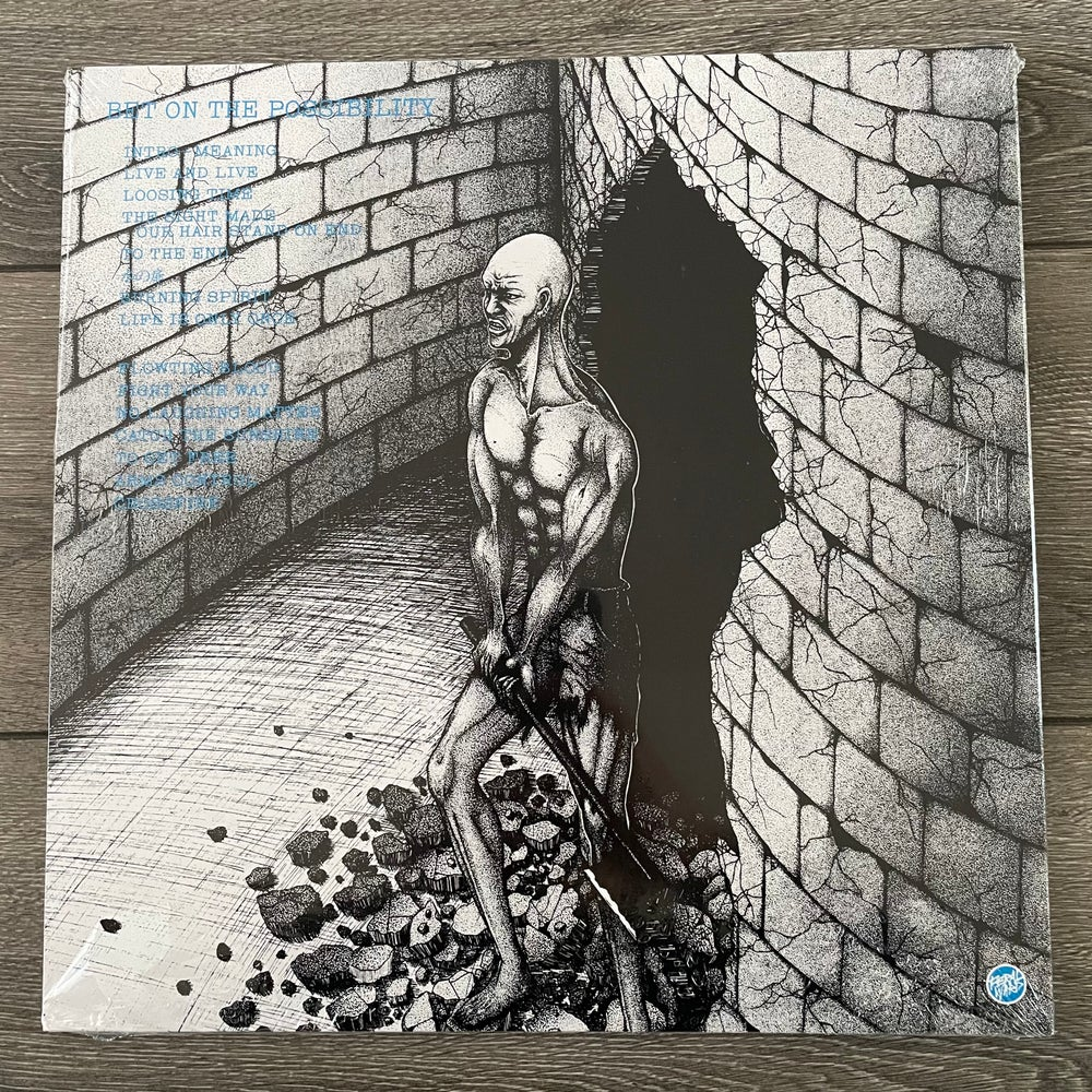 Image of Death Side - Bet On The Possibility Vinyl LP