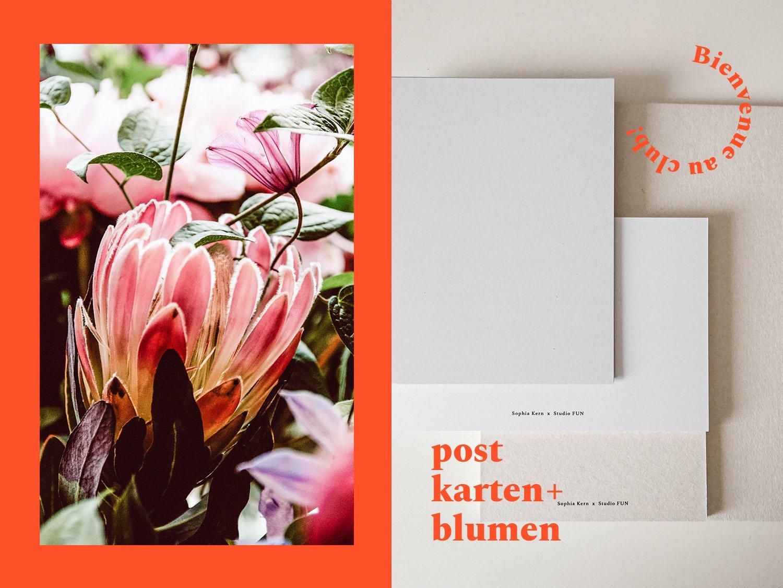 Image of LeClub »Postkarten+Trockenblumen«