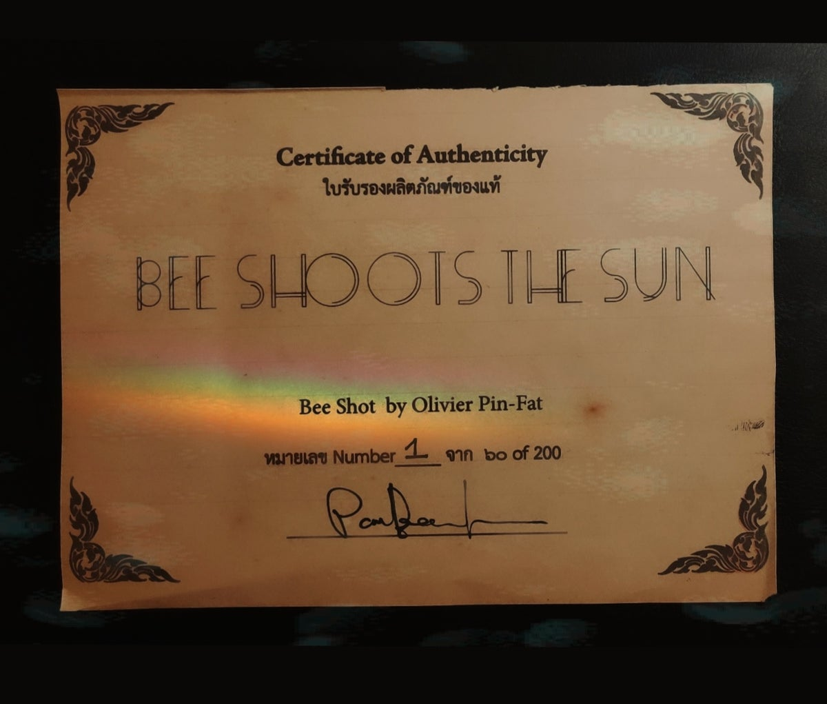 Bee Shoots the Sun