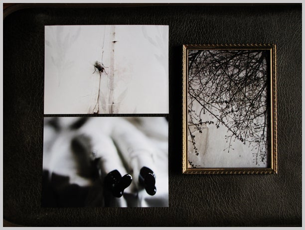 Image of 5x7 prints, single
