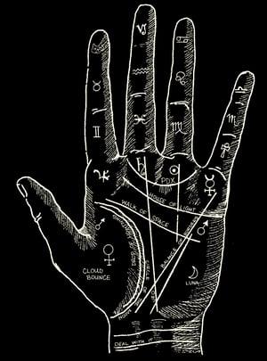 Image of Palm Shirt