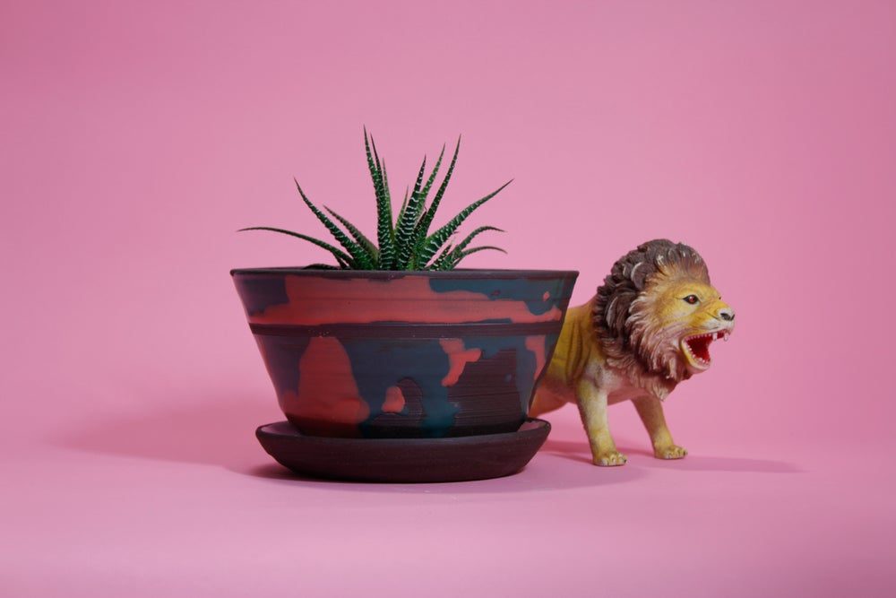 Image of Tequila Sunrise Planter with Plate