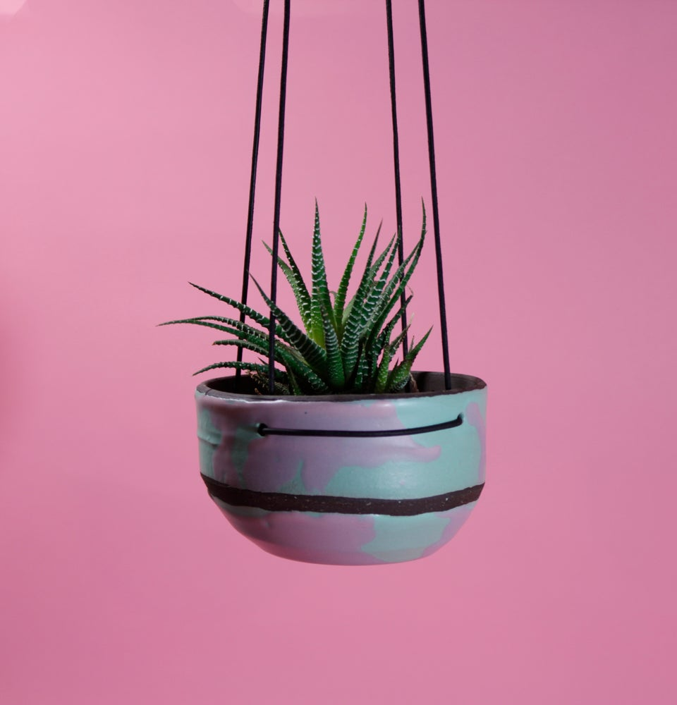 Image of Cool Ranch Hanging Pot