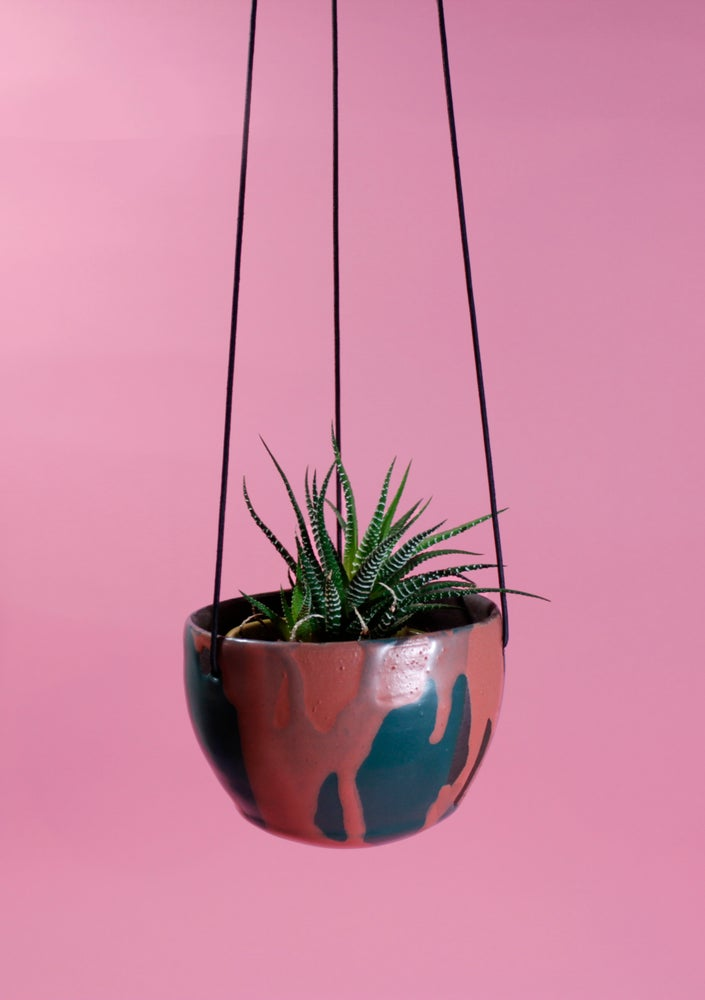 Image of Tequila Sunrise Hanging Pot