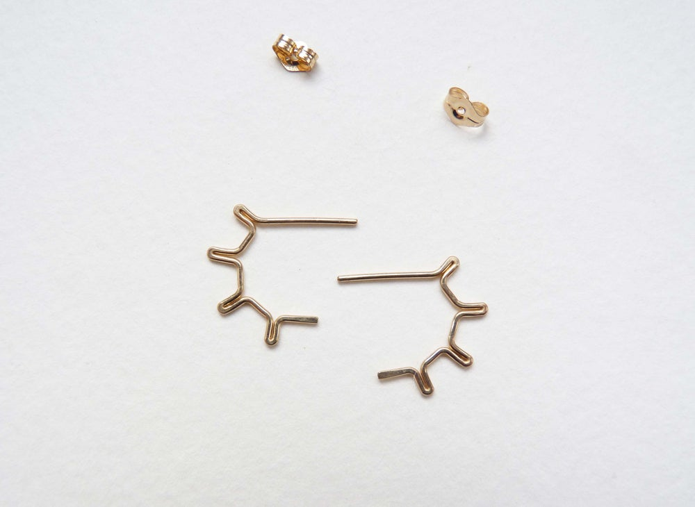 Image of Wheel earrings