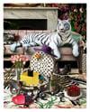 White Chocolate Tiger