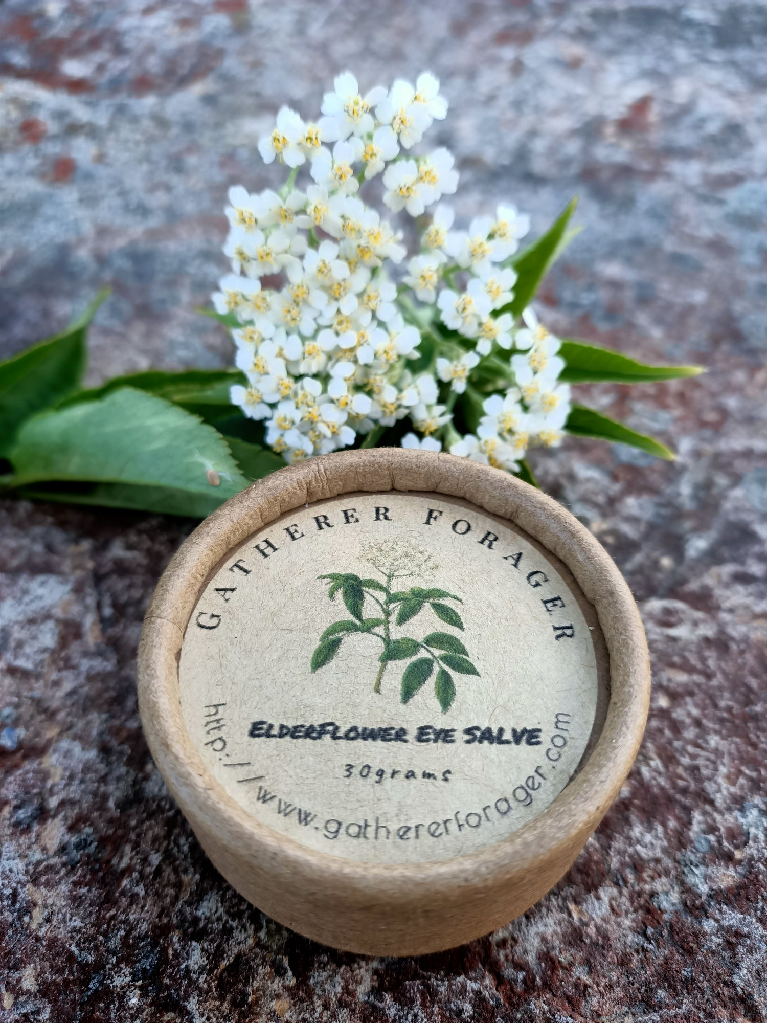 Image of Elderflower Eye salve