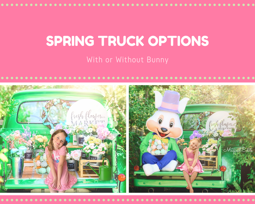 Image of Spring Truck Edit