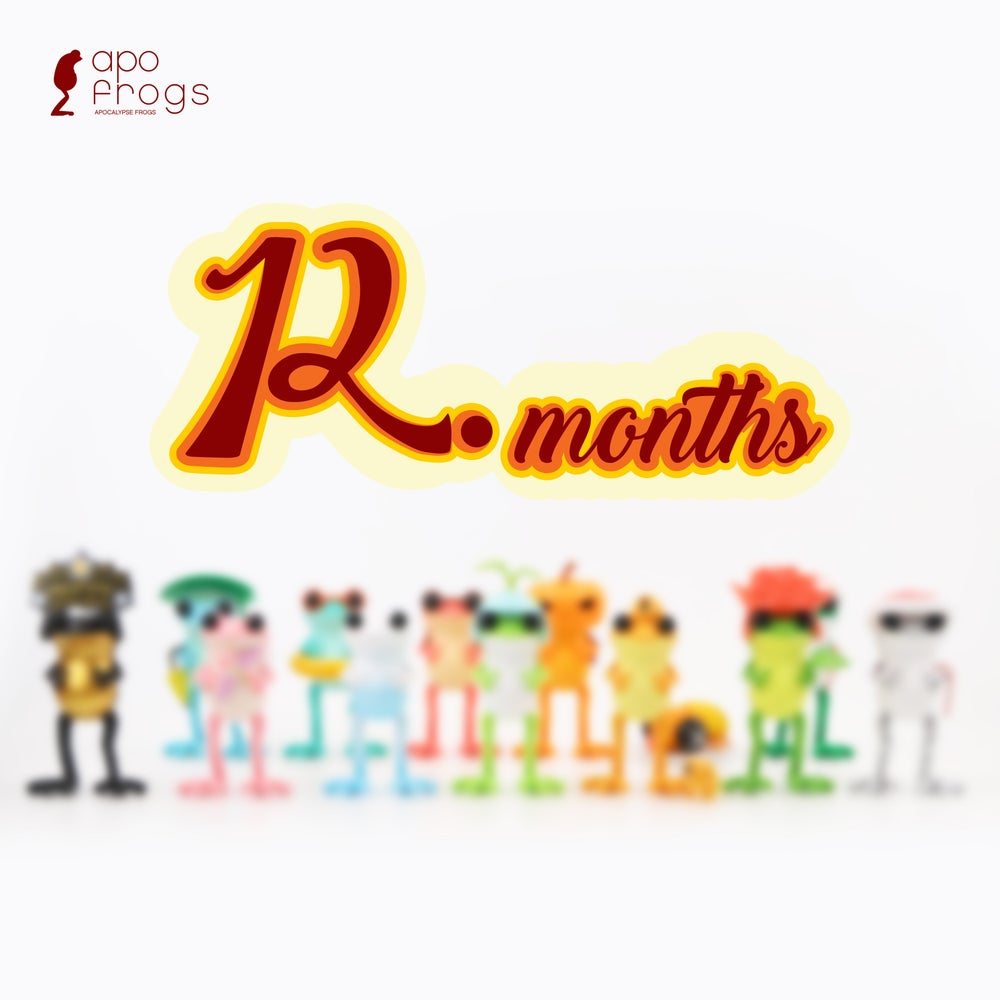 Image of 12months - Blind Box Series